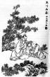 Historie čaje I. - Čína