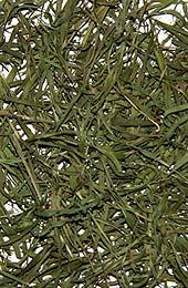 Bambusový list