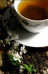 Bylinný čaj - Bylinné a ovocné čaje