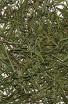 Bambusový list (100g) - Bylinný čaj - Bylinné a ovocné čaje