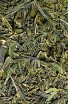 Lung Ching Xi Hu - Zelený čaj - Čínský čaj